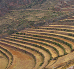 Sacred Valley, Pisac